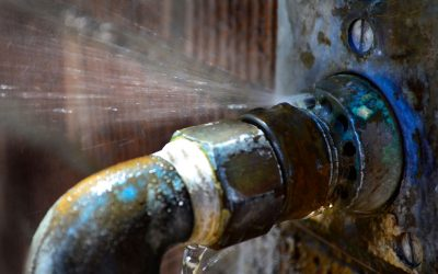 Maintenance Steps to Prevent Plumbing Leaks