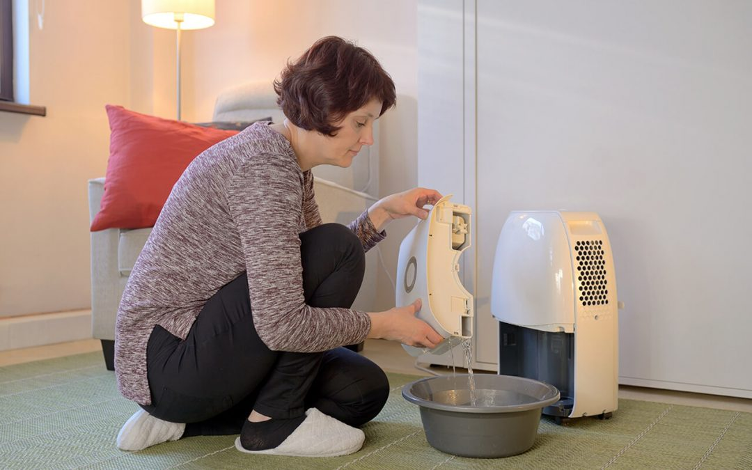 reduce humidity with a dehumidifier